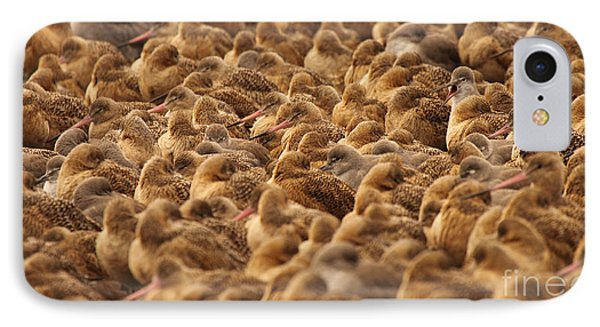 Marbled Godwit Trying To Stick Out From The Flock IPhone Case by Max Allen