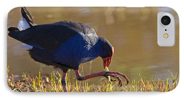 March Of The Swamphen Phone Case by Mike  Dawson