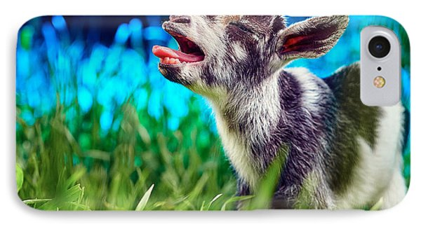Baby Goat Kid Singing IPhone Case by TC Morgan