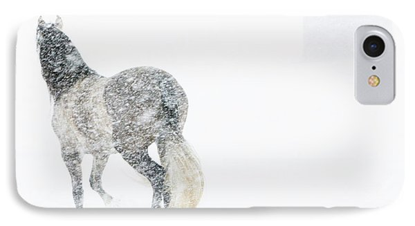 Mare In A Blizzard II IPhone Case