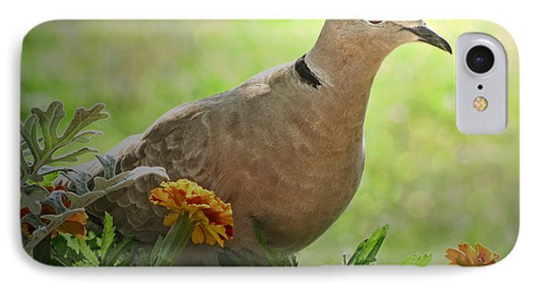 IPhone Case featuring the photograph Marigold Dove by Debbie Portwood