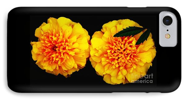 Marigolds With Oil Painting Effect IPhone Case by Rose Santuci-Sofranko
