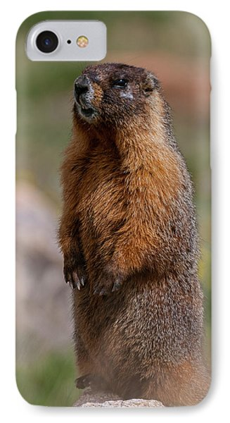 IPhone Case featuring the photograph Marmot by Gary Lengyel