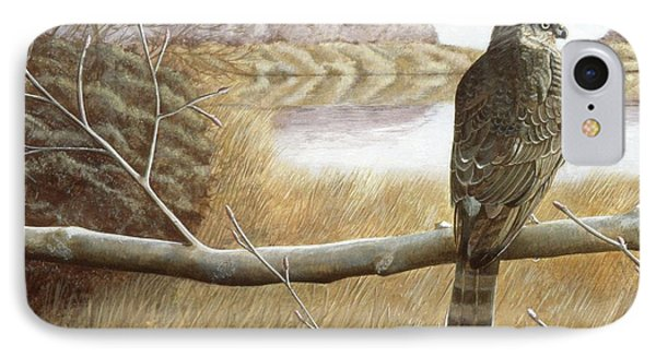 IPhone Case featuring the painting Marsh Hawk by Laurie Stewart