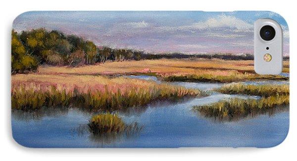 Marshland In Florida IPhone Case