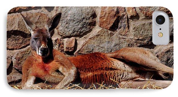 Marsupial Centerfold Phone Case by Lori Tambakis