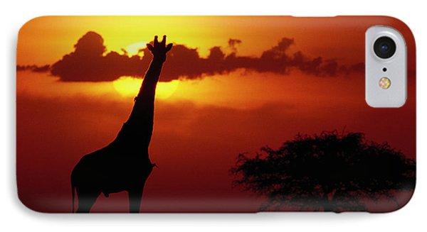 Masai Giraffe Giraffa Camelopardalis Phone Case by Gerry Ellis