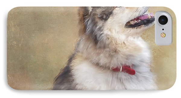 Master Of The Domain II IPhone Case by Colleen Taylor