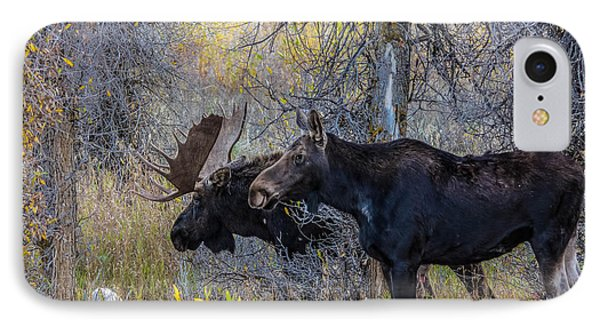 Mating Moose IPhone Case