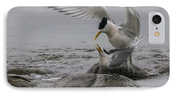 IPhone Case featuring the photograph Mating Pair 2 by Werner Padarin