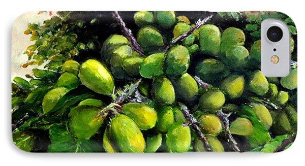 Matoa Fruit IPhone Case by Jason Sentuf