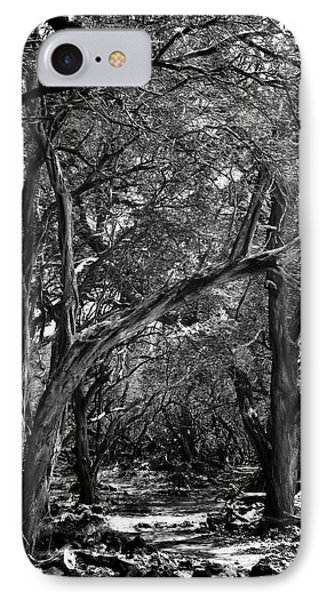 Maui Trees IPhone Case by Art Shimamura