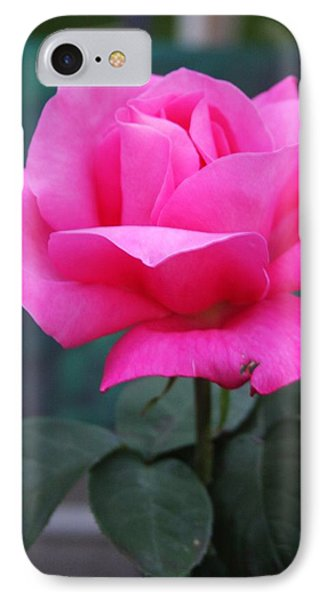 IPhone Case featuring the photograph May Beauty by Vadim Levin