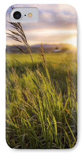 Meadow Light Phone Case by Chad Dutson