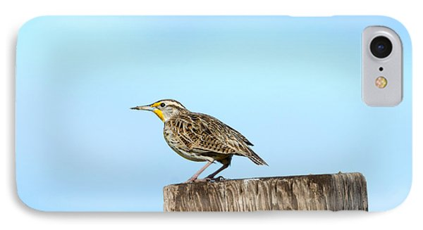 Meadowlark Roost IPhone 7 Case by Mike Dawson