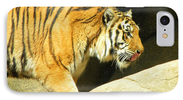 IPhone Case featuring the photograph Meal Time by Sandi OReilly