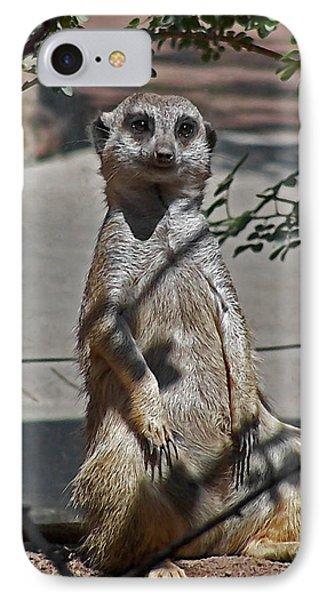 Meerkat 2 IPhone 7 Case by Ernie Echols