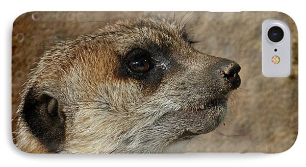 Meerkat 3 IPhone 7 Case by Ernie Echols