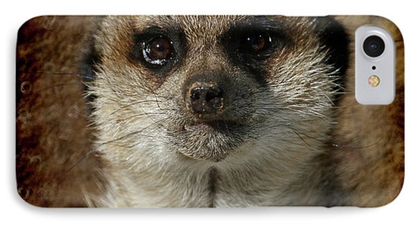 Meerkat 4 IPhone 7 Case by Ernie Echols