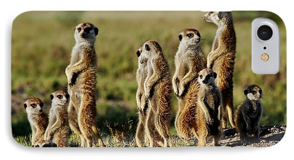 Meerkat Family IPhone Case