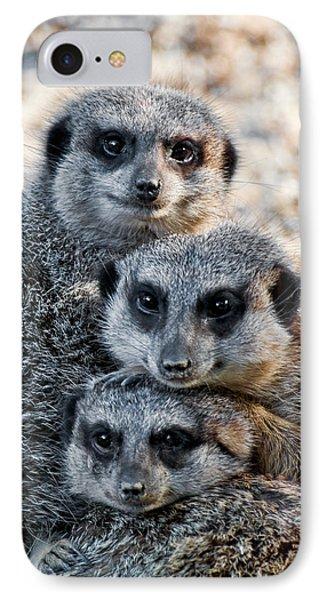 Meerkat Family IPhone Case by Ginger Wakem