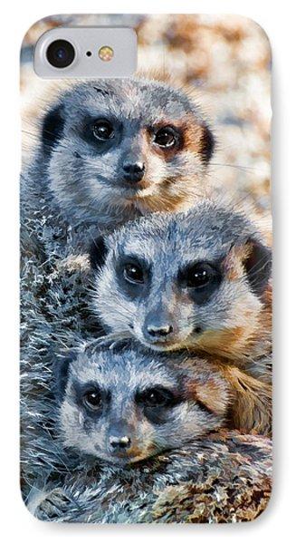Meerkat Family's Bright Eyes IPhone Case by Ginger Wakem