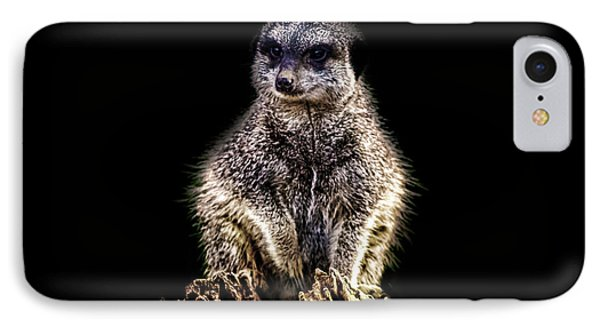 Meerkat iPhone 7 Case - Meerkat Lookout by Martin Newman