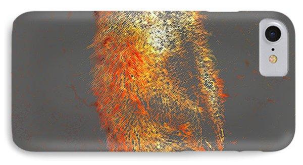 Meerkat Original IPhone Case by David Lee Thompson