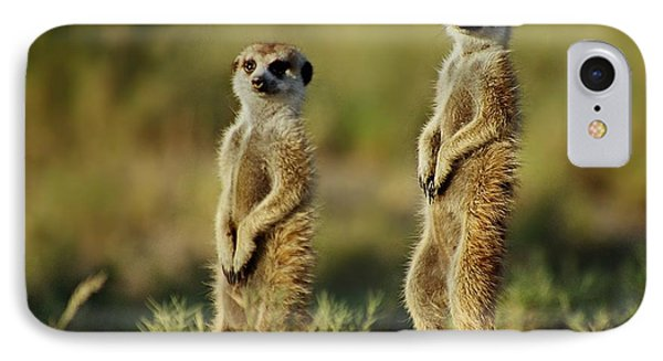 Meerkat Pair IPhone Case
