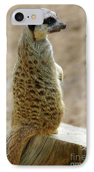 Meerkat iPhone 7 Case - Meerkat Portrait by Carlos Caetano