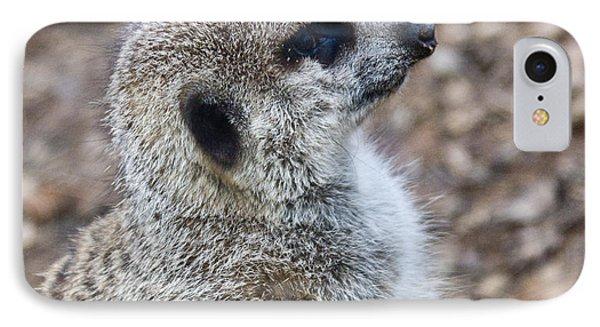 Meerkat Portrait Phone Case by Douglas Barnett