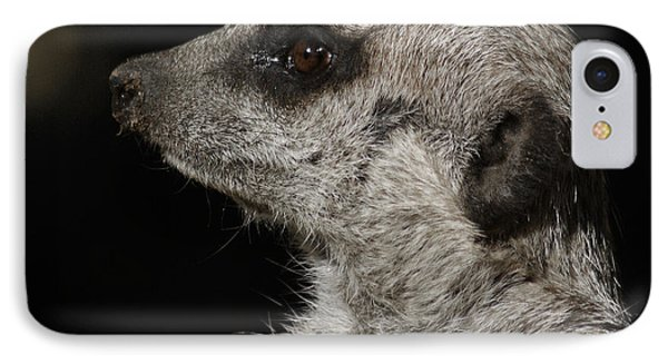 Meerkat iPhone 7 Case - Meerkat Profile by Ernie Echols