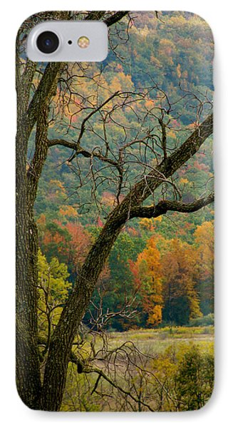 Melody Of Autumn II Phone Case by Debra     Vatalaro