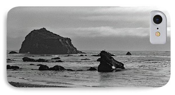 Mendocino Coast No. 1-1 IPhone Case by Sandy Taylor