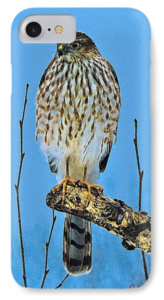 Merlin    Not The Majician IPhone Case by John Selmer Sr