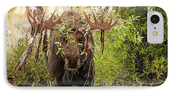 IPhone Case featuring the photograph Messy Moose by Mary Hone