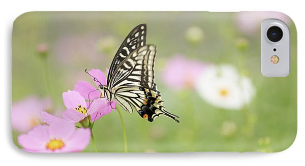 Mexican Aster With Butterfly IPhone Case by Hyuntae Kim