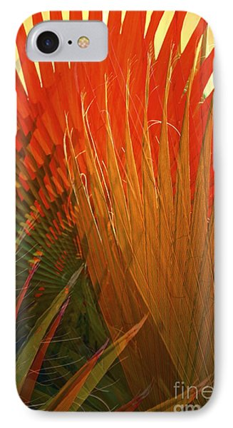 Mexican Palm IPhone Case by Gwyn Newcombe