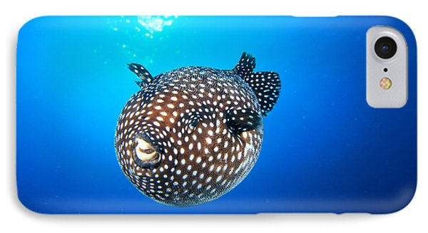 Mexico Guineafowl Puffer Phone Case by Dave Fleetham - Printscapes