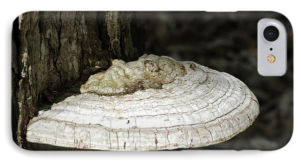 IPhone Case featuring the photograph Michigantree Fungi by LeeAnn McLaneGoetz McLaneGoetzStudioLLCcom