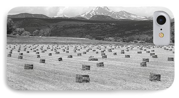 Mid June Colorado Hay  And The Twin Peaks Longs And Meeker Bw Phone Case by James BO  Insogna