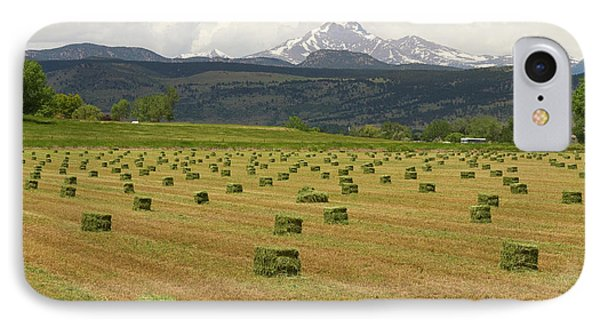 Mid June Colorado Hay  And The Twin Peaks Longs And Meeker Phone Case by James BO  Insogna
