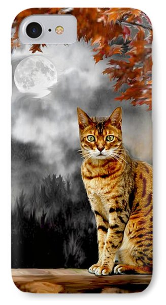 Midnight Tom 1 IPhone Case by Ron Chambers
