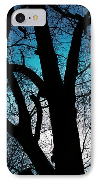 Might Oak 16x20 IPhone Case by Leah Palmer