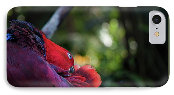 IPhone Case featuring the photograph Miksang 4 Parrot by Theresa Tahara