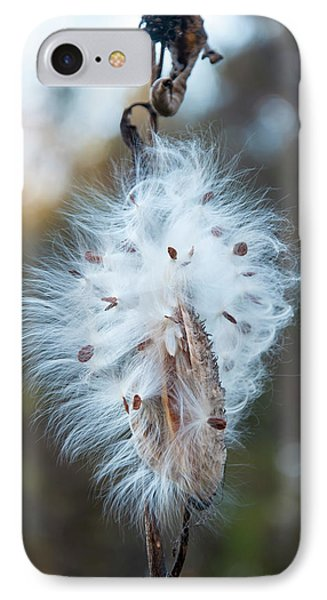 IPhone Case featuring the digital art Milkweed And Its Seeds by Chris Flees