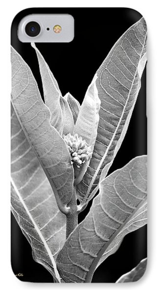 IPhone Case featuring the photograph Milkweed Black And White by Christina Rollo