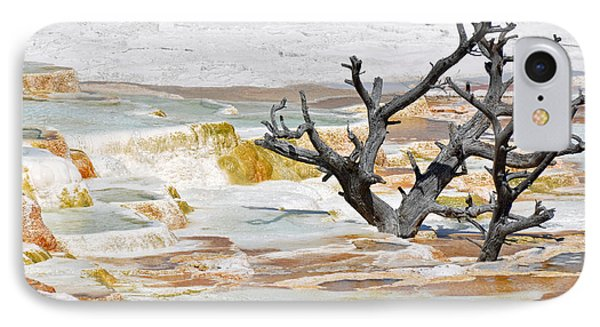 Mineralized Tree IPhone Case by Bruce Gourley