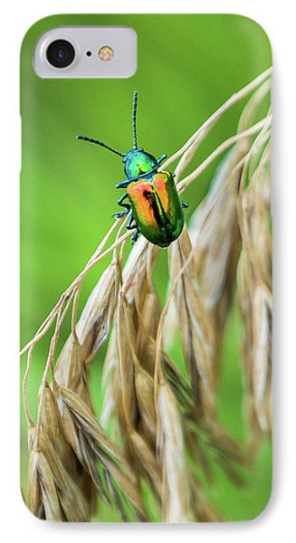 IPhone Case featuring the photograph Mini Metallic Magnificence  by Bill Pevlor