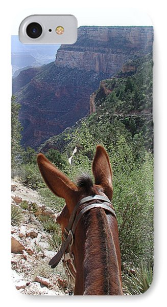 IPhone Case featuring the photograph Miss Ann  by Nancy Taylor